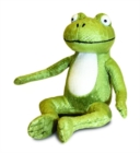 Room on the Broom Frog Soft Toy 32.5cm - Book