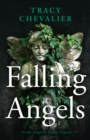 Falling Angels - Book