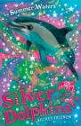 Secret Friends (Silver Dolphins, Book 2) - eBook