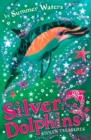 Stolen Treasures (Silver Dolphins, Book 3) - eBook