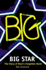 Big Star: The Story of Rock's Forgotten Band - eBook
