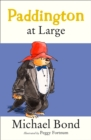 Paddington At Large - eBook