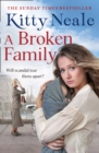 A Broken Family - eBook