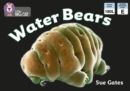 Water Bears: Band 3/Yellow (Collins Big Cat) - eBook