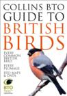 Collins BTO Guide to British Birds - Book