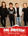One Direction: Where We Are Now - eBook