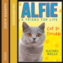 Alfie Cat In Trouble - eAudiobook