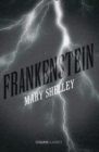 Frankenstein - Book
