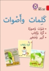 Words and Sounds Big Book : Level 2 (Kg) - Book