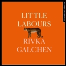 Little Labours - eAudiobook