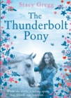 The Thunderbolt Pony - Book