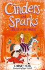 Cinders and Sparks: Fairies in the Forest - Book