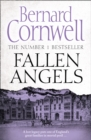 Fallen Angels - Book