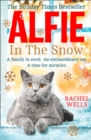 Alfie in the Snow - Book