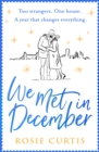 We Met in December - eBook
