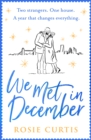 We Met in December - Book