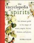 Encyclopedia of Spirits : The Ultimate Guide to the Magic of Fairies, Genies, Demons, Ghosts, Gods & Goddesses - Book