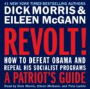Revolt! : How to Defeat Obama and Repeal His Socialist Programs - eAudiobook