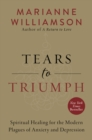 Tears to Triumph : The Spiritual Journey from Suffering to Enlightenment - eBook