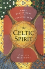 The Celtic Spirit: Daily Meditations for the Turning Year - Book