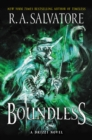 Boundless : A Drizzt Novel - eBook