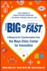 Think Big, Start Small, Move Fast: A Blueprint for Transformation from the Mayo Clinic Center for Innovation - Book