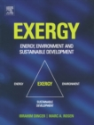 EXERGY : Energy, Environment and Sustainable Development - eBook