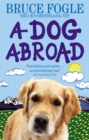 A Dog Abroad : One Man and his Dog Journey into the Heart of Europe - Book