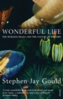 Wonderful Life - Book
