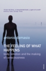 The Feeling Of What Happens - Book