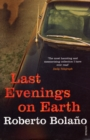 Last Evenings On Earth - Book