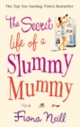 The Secret Life of a Slummy Mummy - Book