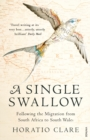 A Single Swallow : Following An Epic Journey From South Africa To South Wales - Book