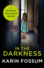 In the Darkness : An Inspector Sejer Novel - Book