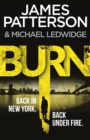 Burn : (Michael Bennett 7). A sizzling New York crime thriller - Book