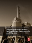 Pollution Control and Resource Recovery : Municipal Solid Wastes Incineration: Bottom Ash and Fly Ash - eBook