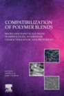 Compatibilization of Polymer Blends : Micro and Nano Scale Phase Morphologies, Interphase Characterization, and Properties - Book