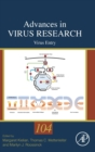 Virus Entry : Volume 104 - Book