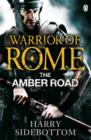 Warrior of Rome VI: The Amber Road - Book