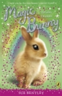 Magic Bunny: Holiday Dreams - Book