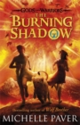The Burning Shadow (Gods and Warriors Book 2) - Book
