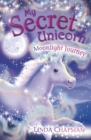 My Secret Unicorn: Moonlight Journey - eBook