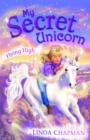 My Secret Unicorn: Flying High - eBook