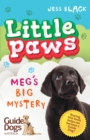 Little Paws 2: Meg's Big Mystery - eBook