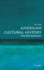 American Cultural History: A Very Short Introduction - Book
