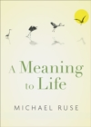 A Meaning to Life - Book