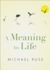 A Meaning to Life - eBook