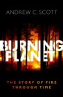Burning Planet : The Story of Fire Through Time - eBook