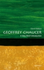 Geoffrey Chaucer: A Very Short Introduction - eBook