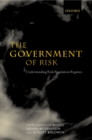 The Government of Risk : Understanding Risk Regulation Regimes - eBook